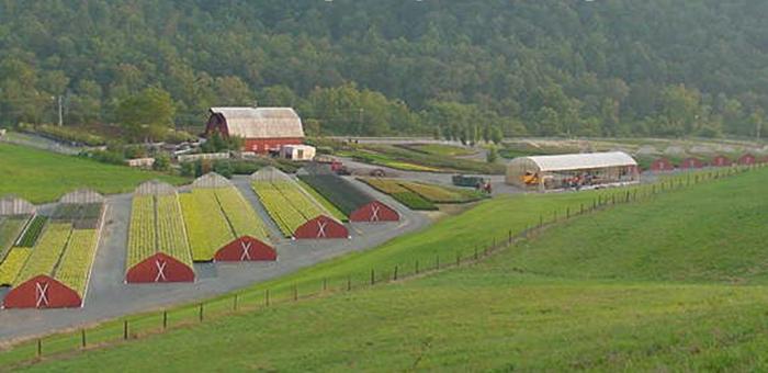 Greenbrier Nurseries